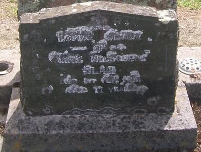 Picture of Taruheru cemetery, block 27, plot 135.