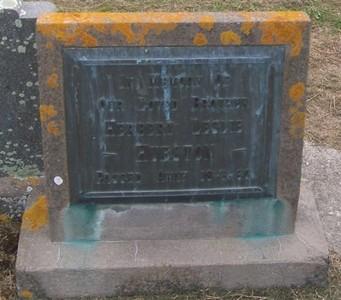 Picture of Taruheru cemetery, block 27, plot 15.