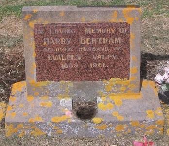 Picture of Taruheru cemetery, block 27, plot 189.