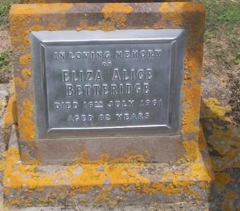 Picture of Taruheru cemetery, block 27, plot 244.