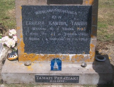 Picture of Taruheru cemetery, block 27, plot 309.