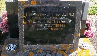 Picture of Taruheru cemetery, block 28, plot 1.