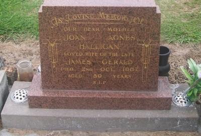 Picture of Taruheru cemetery, block 28, plot 105.