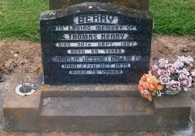 Picture of Taruheru cemetery, block 28, plot 108.