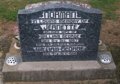 Picture of Taruheru cemetery, block 28, plot 127.
