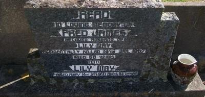Picture of Taruheru cemetery, block 28, plot 13.