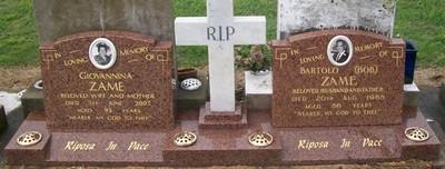 Picture of Taruheru cemetery, block 28, plot 226.