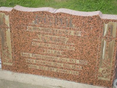 Picture of Taruheru cemetery, block 28, plot 229.
