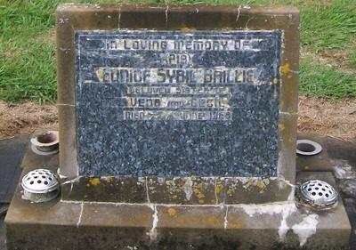 Picture of Taruheru cemetery, block 28, plot 237.