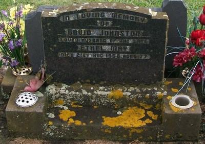 Picture of Taruheru cemetery, block 28, plot 251.