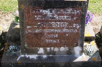 Picture of Taruheru cemetery, block 28, plot 29.