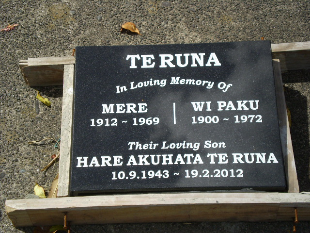 Picture of Taruheru cemetery, block 28, plot 401.
