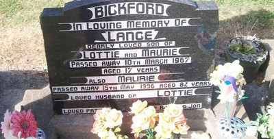 Picture of Taruheru cemetery, block 28, plot 53.