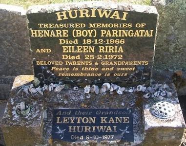 Picture of Taruheru cemetery, block 28, plot 8.