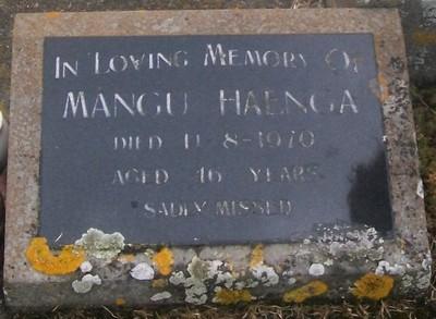 Picture of Taruheru cemetery, block 29, plot 221.
