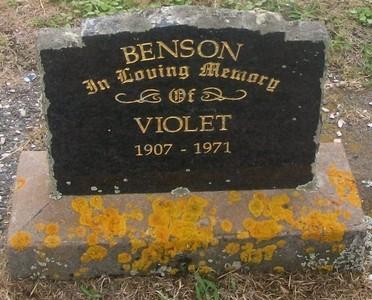 Picture of Taruheru cemetery, block 29, plot 231.