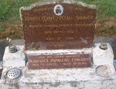 Picture of Taruheru cemetery, block 29, plot 313.