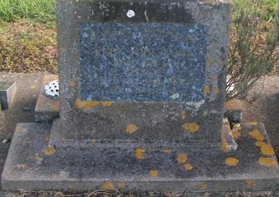 Picture of Taruheru cemetery, block 29, plot 335.