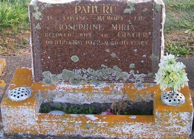 Picture of Taruheru cemetery, block 29, plot 355.