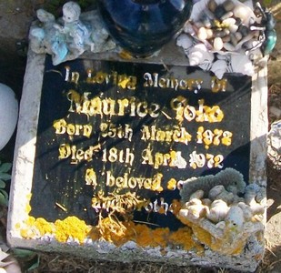 Picture of Taruheru cemetery, block 29, plot 361.