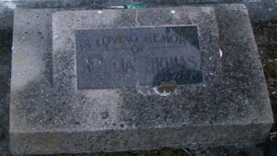 Picture of Taruheru cemetery, block 29, plot 399.
