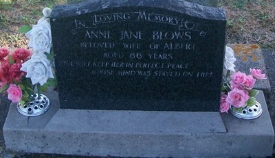 Picture of Taruheru cemetery, block 29, plot 416.
