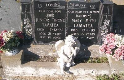 Picture of Taruheru cemetery, block 29, plot 442.