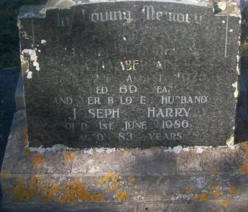 Picture of Taruheru cemetery, block 29, plot 514.