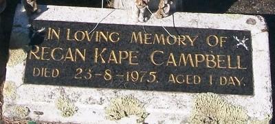 Picture of Taruheru cemetery, block 29, plot 576A.