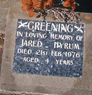 Picture of Taruheru cemetery, block 29, plot 581B.
