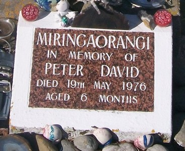 Picture of Taruheru cemetery, block 29, plot 583B.
