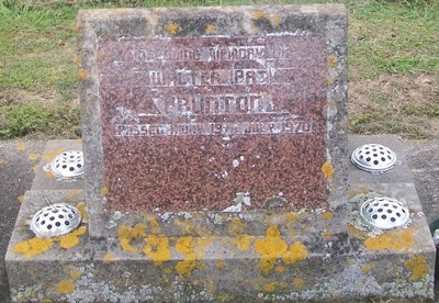 Picture of Taruheru cemetery, block 29, plot 6.
