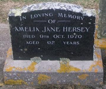 Picture of Taruheru cemetery, block 29, plot 90.