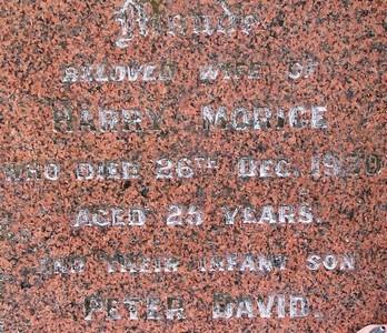 Picture of Taruheru cemetery, block 2, plot 17.