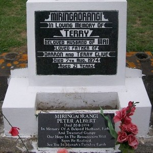 Picture of Taruheru cemetery, block 30, plot 111.