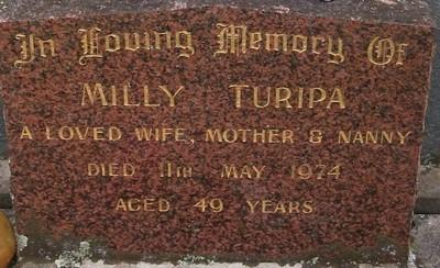 Picture of Taruheru cemetery, block 30, plot 87.
