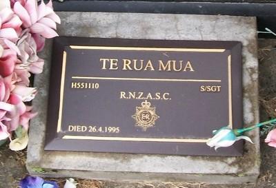 Picture of Taruheru cemetery, block 35, plot 236.