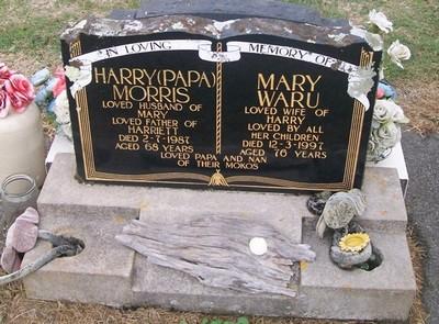 Picture of Taruheru cemetery, block 36, plot 486.