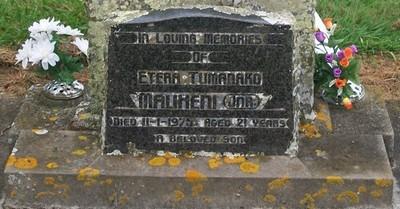 Picture of Taruheru cemetery, block 40, plot 123.