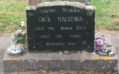 Picture of Taruheru cemetery, block 40, plot 129.