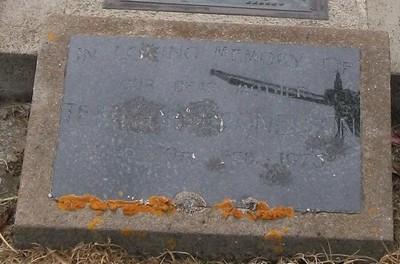 Picture of Taruheru cemetery, block 40, plot 139.