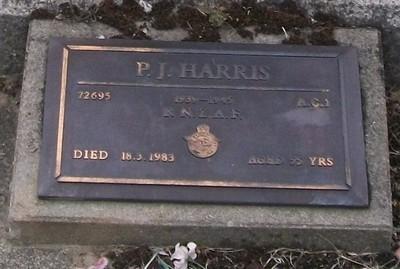 Picture of Taruheru cemetery, block 40, plot 256.