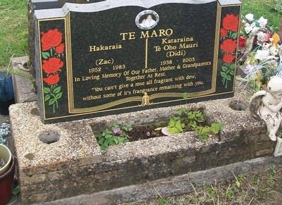 Picture of Taruheru cemetery, block 40, plot 328.