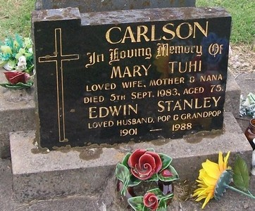 Picture of Taruheru cemetery, block 40, plot 329.