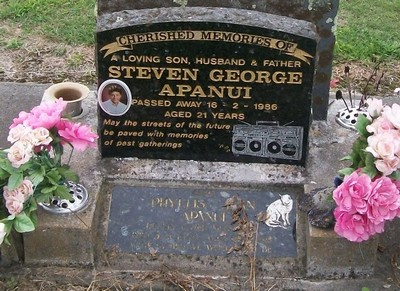 Picture of Taruheru cemetery, block 40, plot 444.