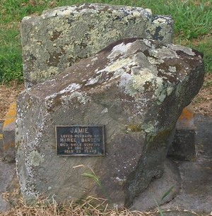 Picture of Taruheru cemetery, block 40, plot 50.