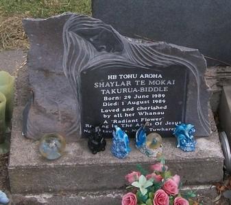 Picture of Taruheru cemetery, block 40, plot 557A.