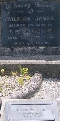 Picture of Taruheru cemetery, block 6, plot 113.