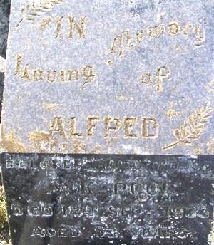 Picture of Taruheru cemetery, block 6, plot 49.