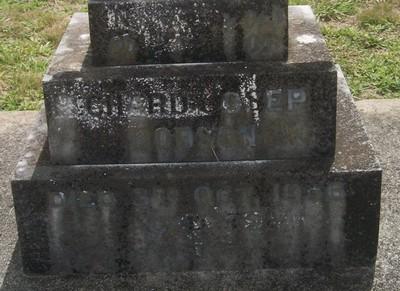 Picture of Taruheru cemetery, block 7, plot 107.